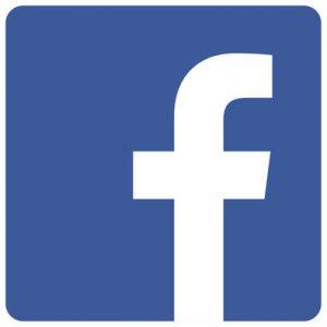 Icono-Facebook_EDIIMA20171010_0383_19
